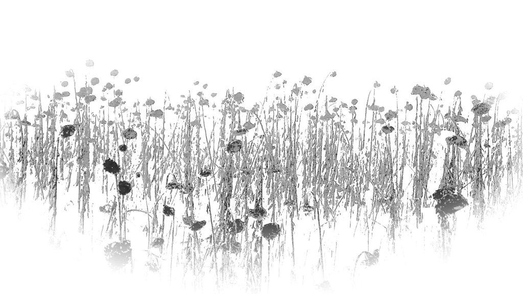 Web-Serie-3-09.jpg